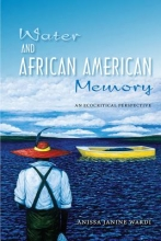 Wardi, Anissa J. Water and African American Memory