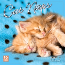 Sellers Publishing, Inc Cal 2017-Cat Naps