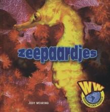 Judy  Wearing Zeepaardjes