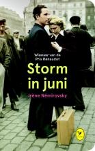 Storm in juni