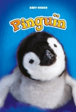 Kari Schuetz , Pinguïn