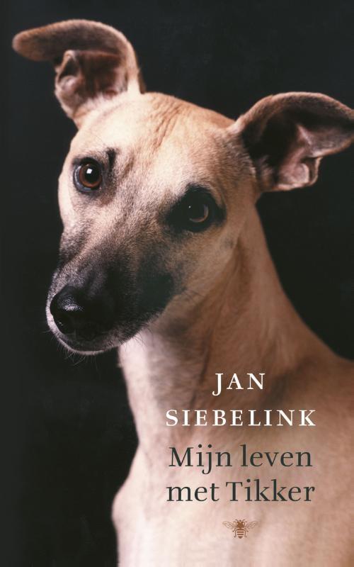 Jan Siebelink,Mijn leven met tikker
