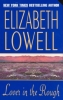 Lowell, Elizabeth,Lover in the Rough