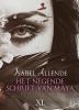 Isabel  Allende,Het negende schrift van Maya - grote letter uitgave