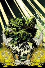 Snyder, Scott Swamp Thing