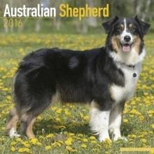 Avonside Publishing Ltd. Australian Shepherd Calendar 2016