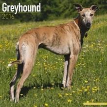Avonside Publishing Ltd. Greyhound Calendar 2016