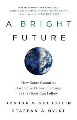 Joshua S. Goldstein,A Bright Future
