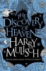 H. Mulisch, Discovery of Heaven