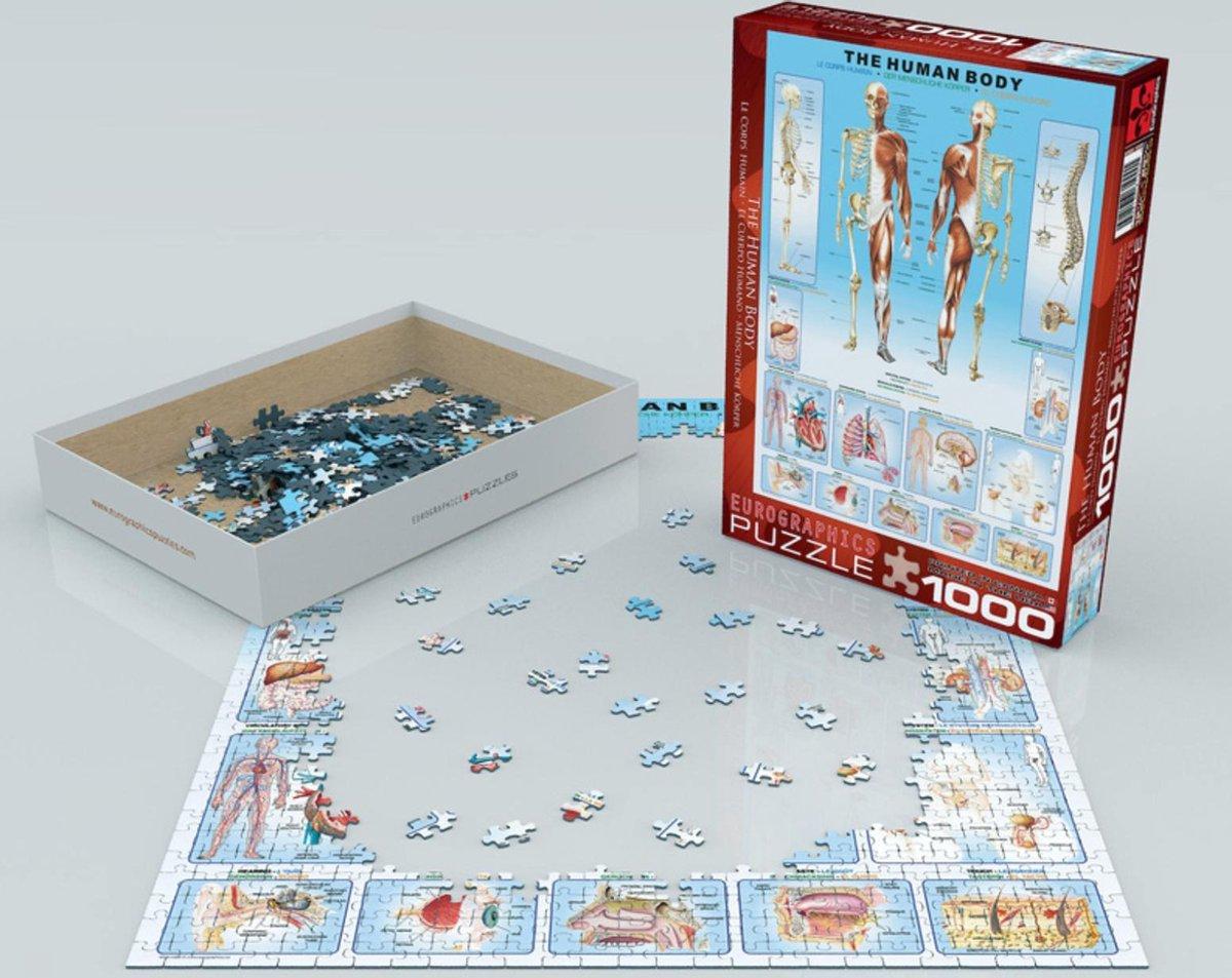 ,Puzzel eurographics the human body 1000 stukjes