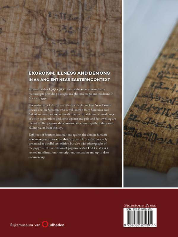 Susanne Beck,Exorcism, illness and demons in an ancient Near Eastern context