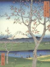 Japanese Views Portfolio Notes