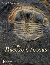 Bruce L. Stinchcomb More Paleozoic Fossils