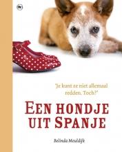 Belinda Meuldijk , Een hondje uit Spanje