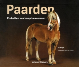 Liz  Wright Paarden
