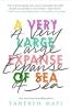 Tahereh Mafi,Very Large Expanse of Sea