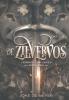 <b>Joke de Meyer</b>,De Zilvervos
