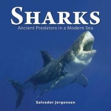 Salvador Jorgensen Sharks