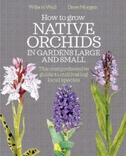 Wilson Wall,   Dave Morgan How to Grow Native Orchids in Gardens Large and Small