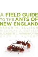 Aaron M. Ellison,   Nicholas J. Gotelli,   Elizabeth J. Farnsworth,   Gary D. Alpert A Field Guide to the Ants of New England