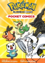 Harukaze, Santa Pokemon Black & White Pocket Comics