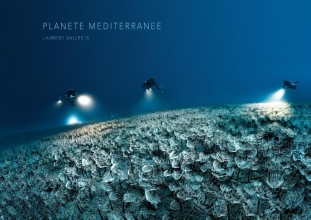Laurent Ballesta , Mediterranean Planet