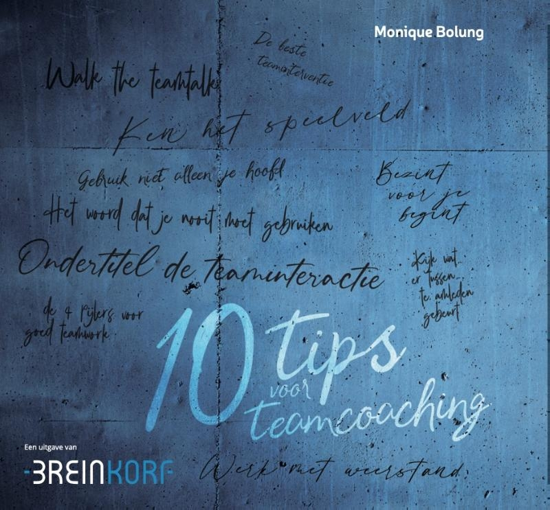 Monique Bolung,10 Tips voor Teamcoaching