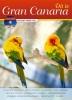 <b>Peter van Mastrigt, Alec  Steevels</b>,Dit is Gran Canaria + DVD