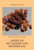 Annemiek  Kinds,Jasper en het geheim van Sinterklaas