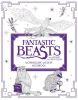 ,<b>Fantastic Beasts and Where to Find Them: Wonderlijke wezens - kleurboek</b>
