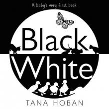Tana Hoban Black White
