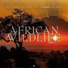 Ingo Gerlach Emotional Moments: African Wildlife Part II. 2019