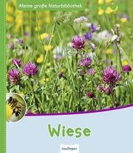 Zysk, Stefanie Meine große Naturbibliothek: Wiese
