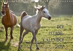 Zitzler, Hans Pferdekalender (Wandkalender 2017 DIN A4 quer)