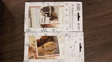 , Kerstkaarten fries frysk - hangpakje 10 dubbele kaarten