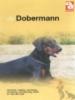 <b>Katja Brom-ter Beek (red)</b>,De Dobermann