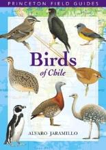 Alvaro Jaramillo,   David Beadle,   Peter Burke Birds of Chile