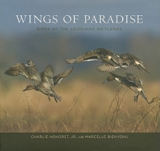 Jr, Charlie Hohorst Wings of Paradise