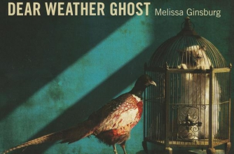 Ginsburg, Melissa Dear Weather Ghost