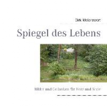 Meierewert, Dirk Spiegel des Lebens