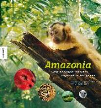 Alcantara, Araquèm Amazonia