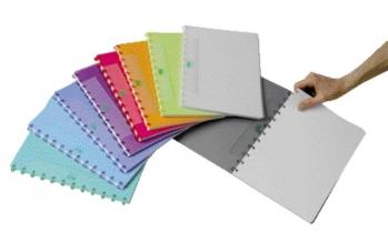 , Schrift Adoc Colorlines A4 ruit 5x5mm 144blz 90gr PP assorti