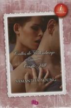 Young, Samantha Las calles de Edimburgo Castle Hill Until Fountain Bridge Castle Hill