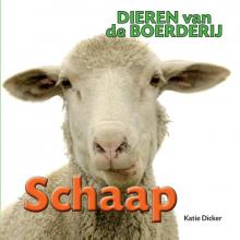 Katie  Dicker Dieren van de Boerderij - Schaap