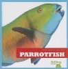Meister, Cari,Parrotfish