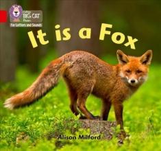 Alison Milford It is a Fox