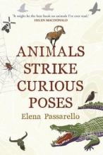 Elena,Passarello Animals Strike Curious Poses