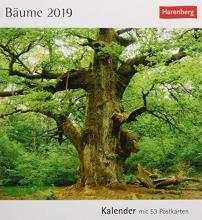 Bäume 2019