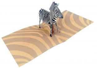 2totango Zebra