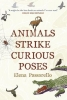 Passarello Elena, Animals Strike Curious Poses
